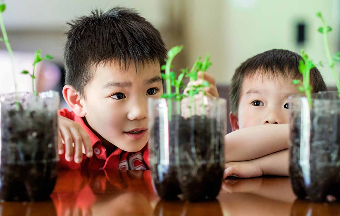 Kids admiring plants in their home.